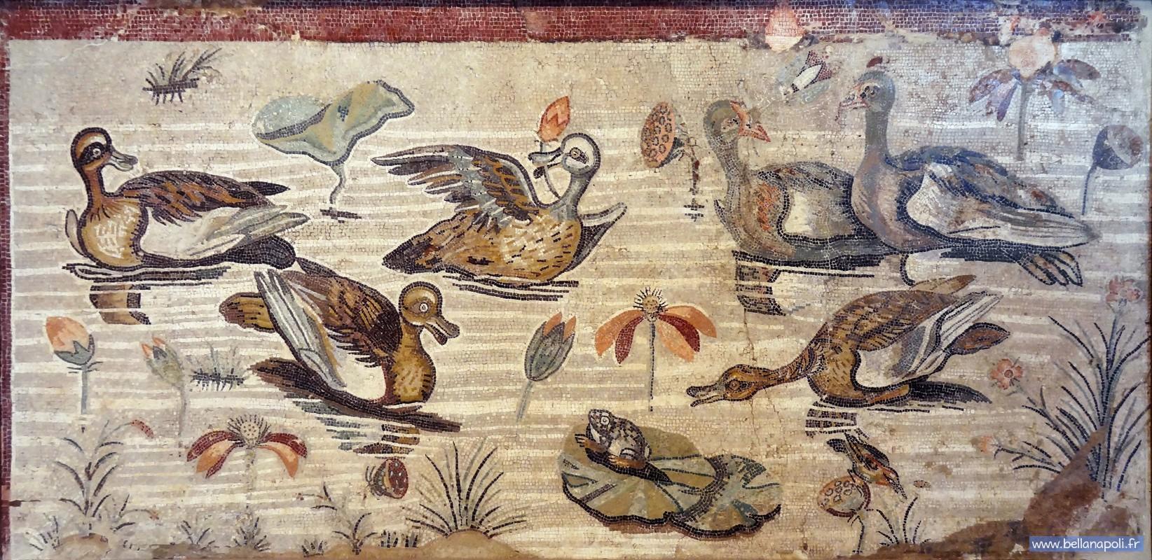 La mosa que romaine bella napoli d couverte de naples for Comment coller de la mosaique
